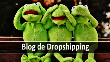 Blog de Dropshipping